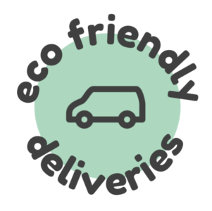 Man with ELECTRIC van and sameday parcel delivery service